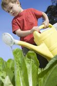 2 Year Old in vegetable garden with watering can — Stock Photo