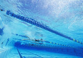 Swimmers racing together — Stock Photo