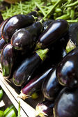 Aubergine at a market stall — Stock Photo