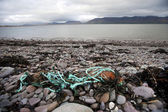 Rubbish on shore with water — Stock Photo