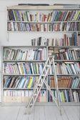 Books shelves — Stock Photo
