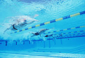 Athletes competing in swimming pool — Stock Photo