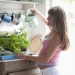 Pregnant woman watering house plants — Stock Photo #34002513