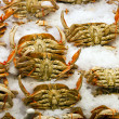 Crabs on display at fish market — Stock Photo #34002675