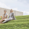 Businesswomen on grass steps — Stock Photo #34002761