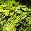 Parsley leaves in supermarket — Stock Photo