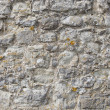 Cobbled wall — Foto Stock