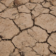 Dry cracked soil — Stock Photo #34004531