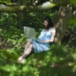 Pregnant woman using laptop in woods — Stock Photo #34004799