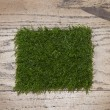 Artificial grass — Stock Photo