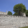 Tower of London — Stock Photo #34005119