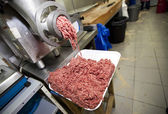 Minced meat falling from machine — Stock Photo
