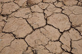 Dry cracked soil — Stock Photo