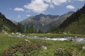 Tiefental Valley — Stock Photo