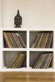 Vinyl records in shelf — Stock Photo