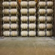 Wine barrels in storage — Stock Photo #34019021