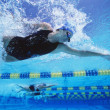 Professional female swimmers — Stockfoto