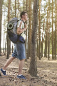 Male hiker  walking in forest — Stock Photo