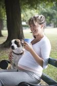 Pregnant woman on park bench with dog — Стоковое фото