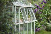 Estufa no jardim — Foto Stock