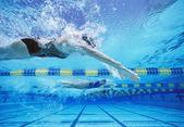 Female swimmers racing — Zdjęcie stockowe