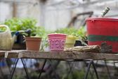 Gardening equipment — Foto Stock