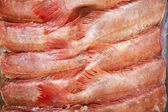 Freshly caught red fishes — Stock Photo