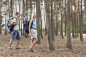 Couple trekking in forest — Stock Photo