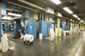 Tidningen fabriken inredning — Stockfoto