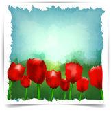 Watercolor summer tulips background. — Stock Vector