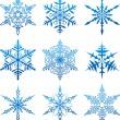 Vector snowflakes. — Stock Vector