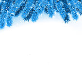 Fir blue christmas background. — Vector de stock