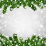Fir christmas frame. — Stock Vector #36814371