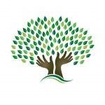 hoop boom handen — Stockvector