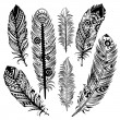 Stockvektor : Set of ethnic feathers