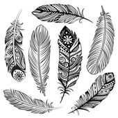 Set of ethnic feathers — Stock Vector