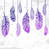 Beautiful illustration of feathers — Stock Vector