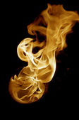 Isolated fire flames on black background, darkness — Stock Photo