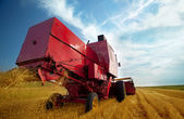Combine working on a wheat field — Stock Photo