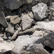 Stock Photo: Cement Rock rubble