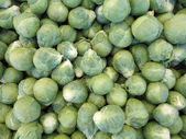 Pile of Brussel Sprouts — Stock Photo