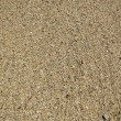 Stock Photo: KahalBeach Sand