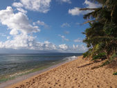 Kaanapali Beach with gentle waves and Coconut trees — Stock Photo
