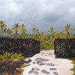Massive man-made Rock Walls of Pu'uhonua o Honaunau - Place of R — Stock Photo