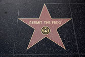 Kermit the Frog Hollywood Star — Stock Photo