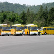 South Korean School Buses in parking lot — Stock Photo #51034947