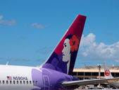 Tails of Hawaiian Airlines and Japan Airlines airplanes — Stock Photo