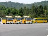 South Korean School Buses in parking lot — Zdjęcie stockowe