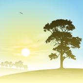 Krajobraz łąka — Wektor stockowy