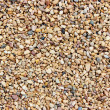 Stock Photo: Beach Pebbles